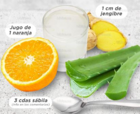 Healthy shot of Aloe Vera