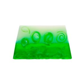 Aloe Vera and Argan soap